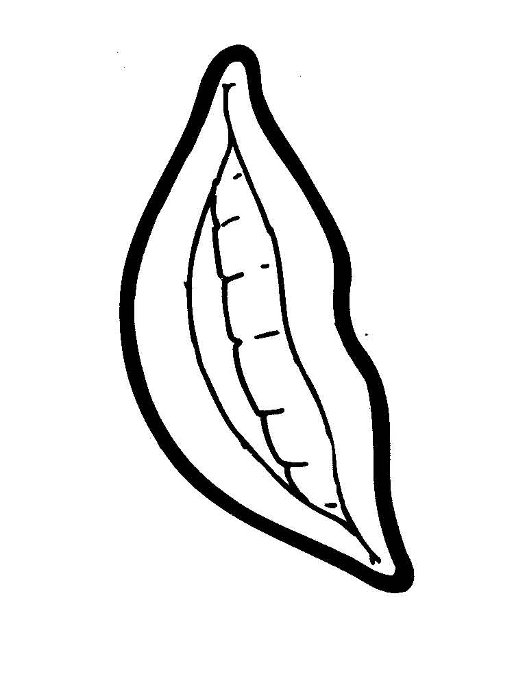 pictures of lips to color lips coloring pages free printable lips coloring pages to pictures color lips of