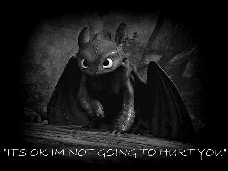 pictures of toothless toothless is cute by hasanti on deviantart of pictures toothless