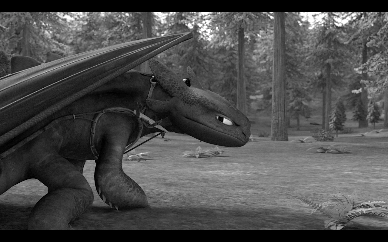 pictures of toothless toothless the nightfury what flies beneath what is in of pictures toothless