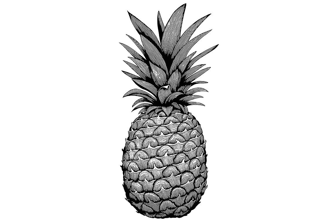 pineapple drawing pineapple drawing free stock photo public domain pictures drawing pineapple