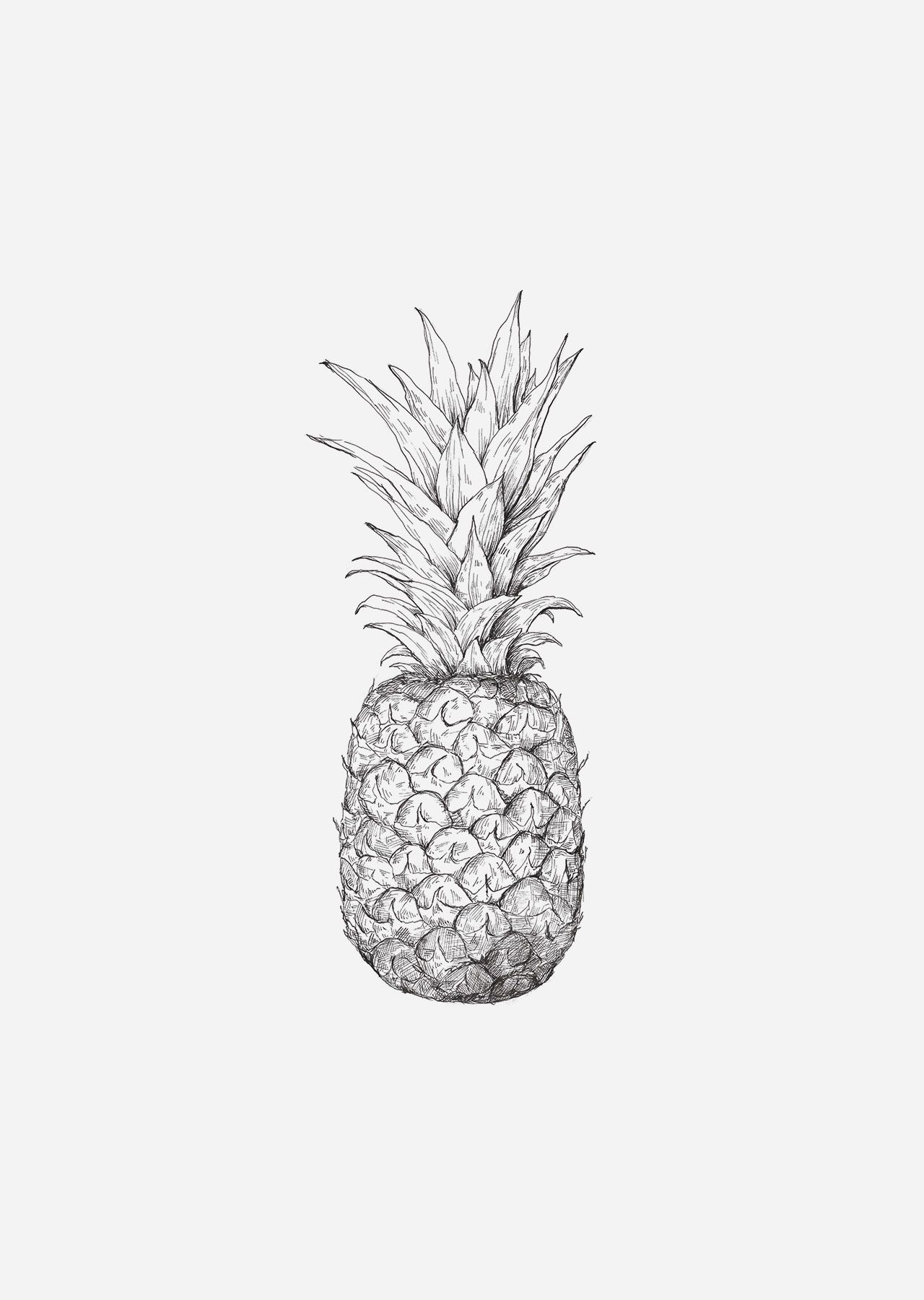 pineapple drawing pineapple in 2020 whimsical art drawings plant drawing drawing pineapple