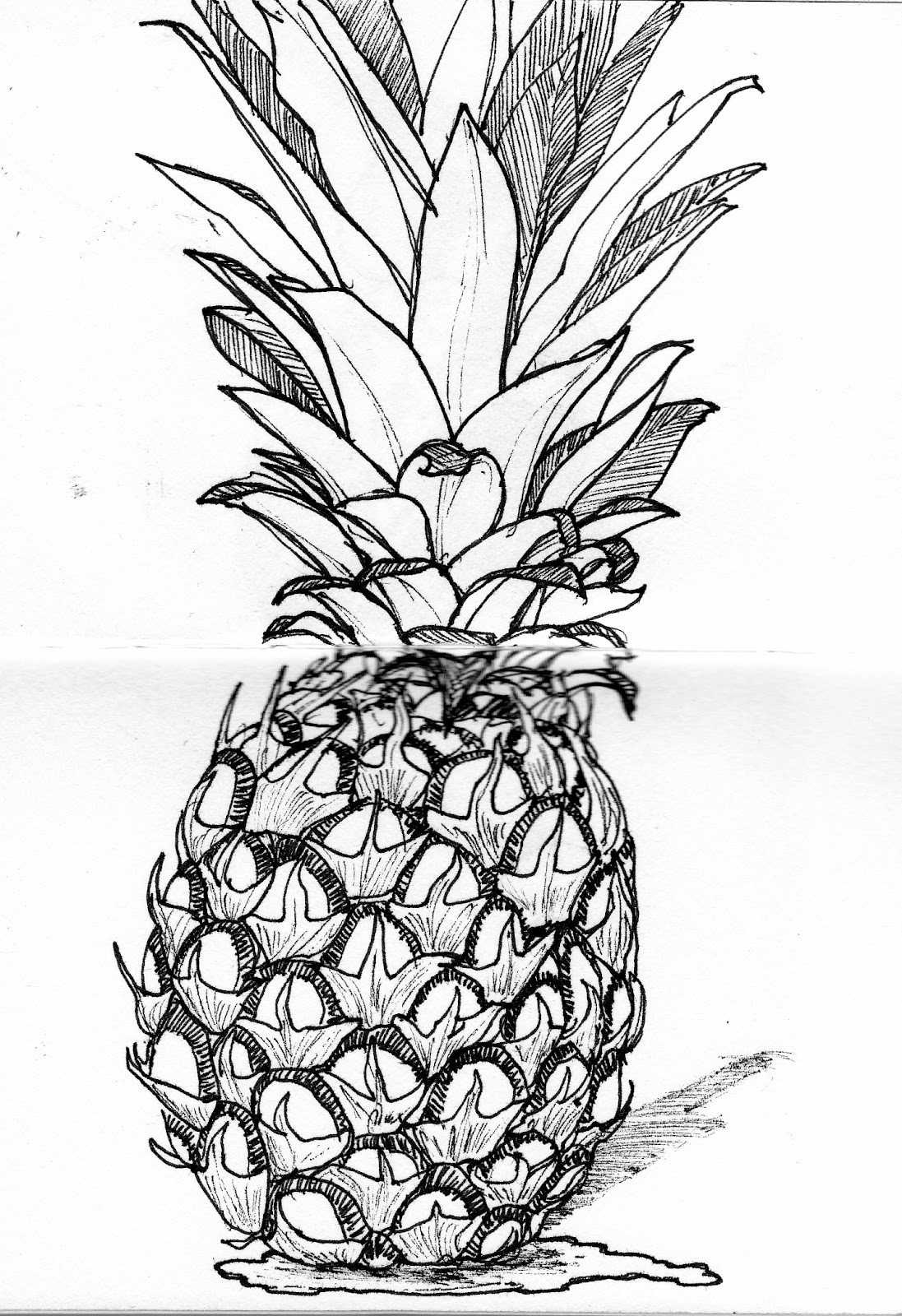 pineapple line drawing how to draw a pineapple step by step easylinedrawing pineapple drawing line