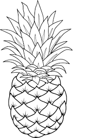 pineapple line drawing pineapple clip art clipart best pineapple drawing line