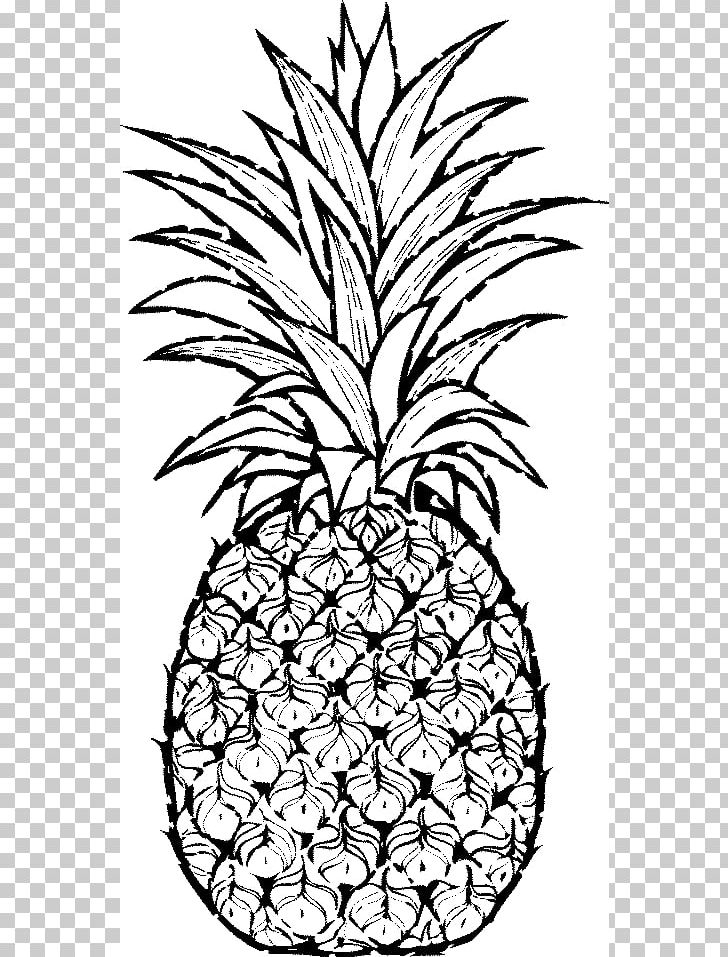 pineapple line drawing pineapple drawing png clipart art artwork black and drawing line pineapple