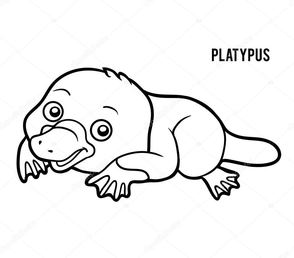 platypus pictures to print perry the platypus coloring pages coloring pages to print pictures platypus to