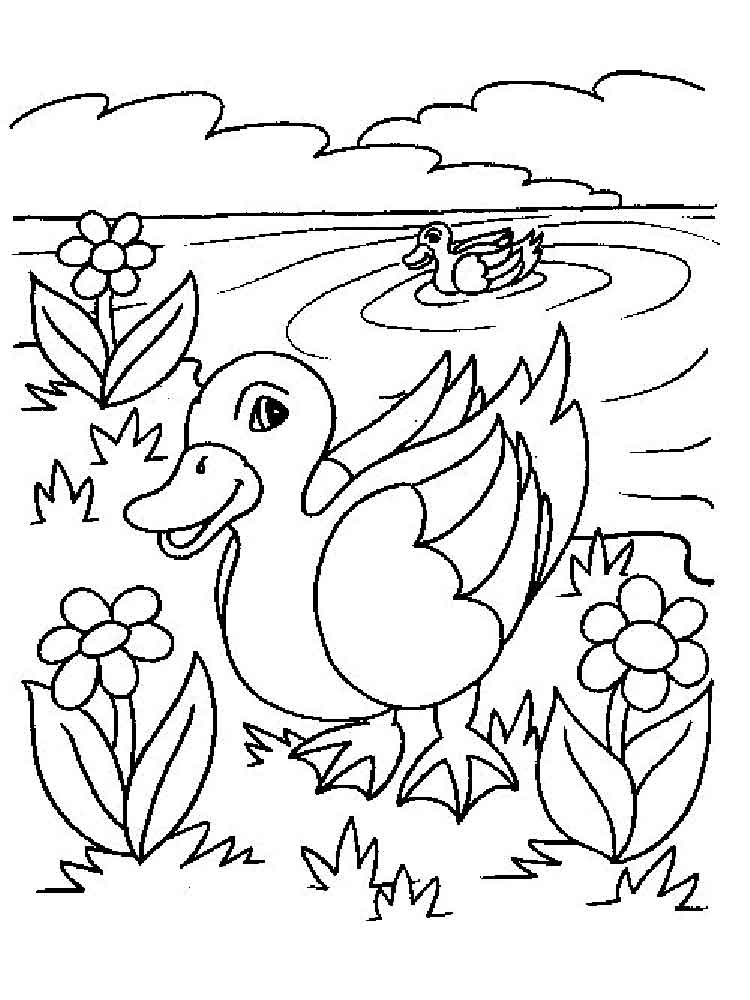 pond coloring pages around the pond sheet coloring pages coloring pond pages