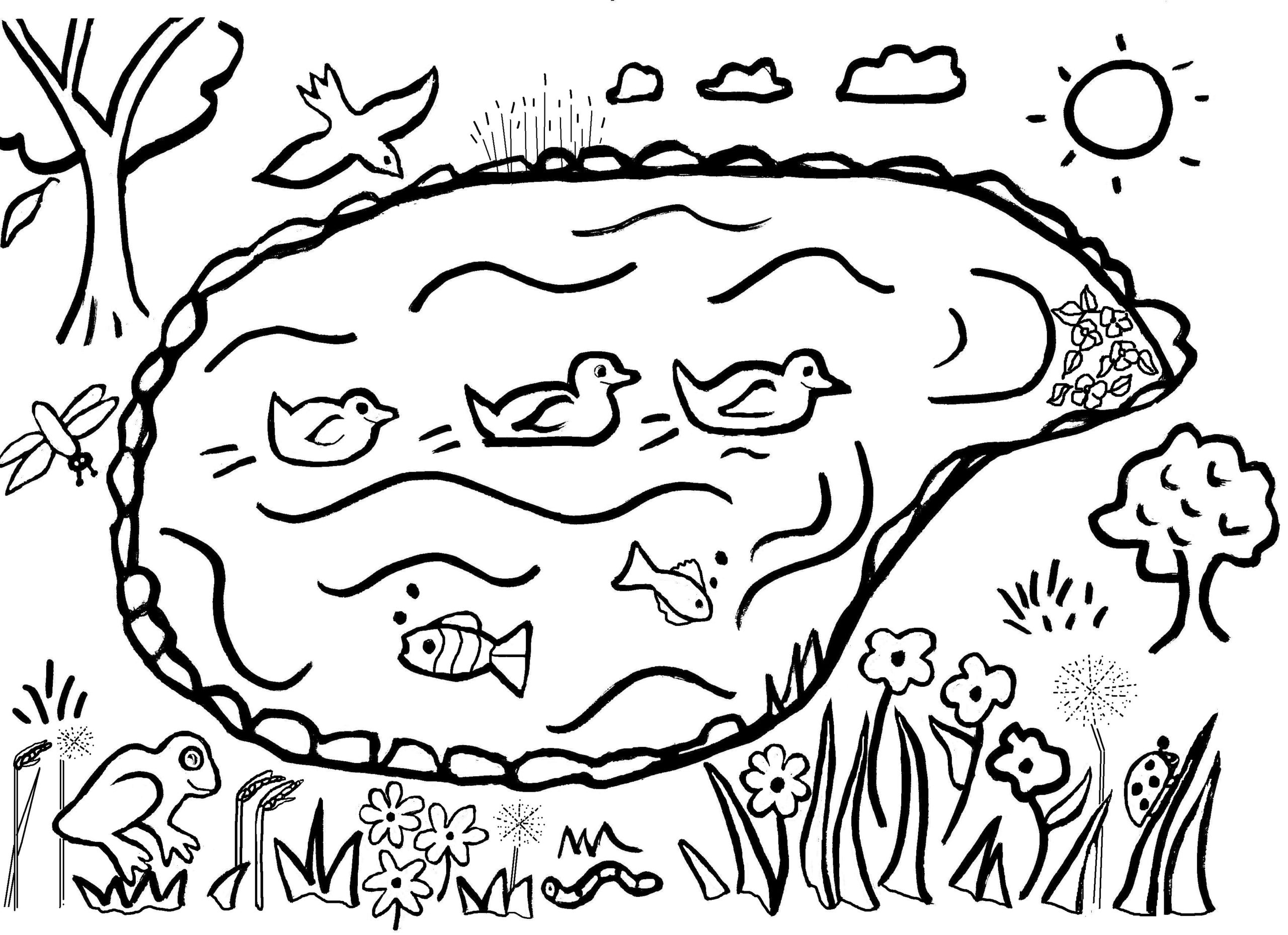 pond coloring pages pond coloring download pond coloring for free 2019 pond pages coloring