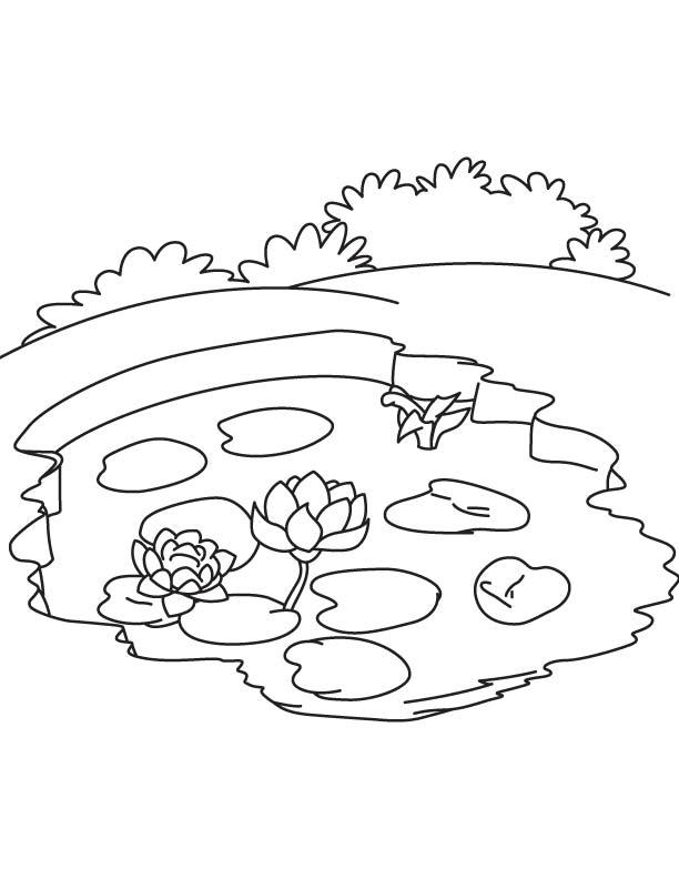 pond coloring pages pond coloring page twisty noodle pages pond coloring