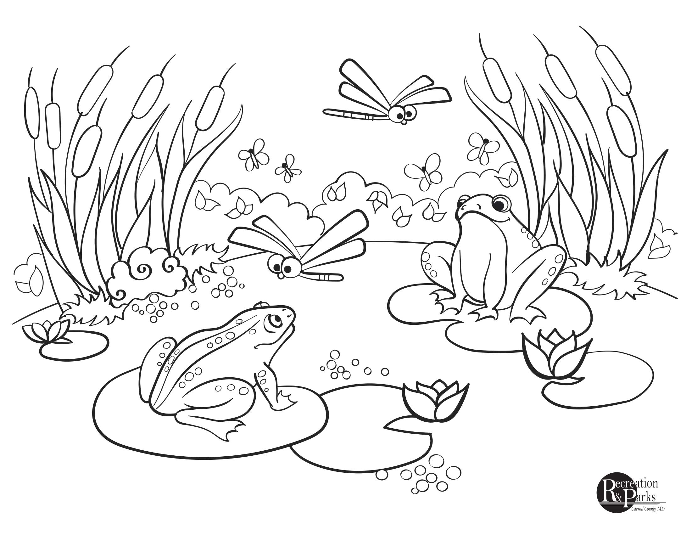 pond coloring pages pond coloring pages at getdrawings free download pages pond coloring