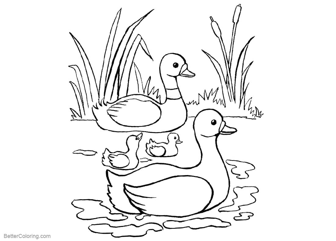 pond coloring pages pond coloring pages line drawing free printable coloring pond pages coloring