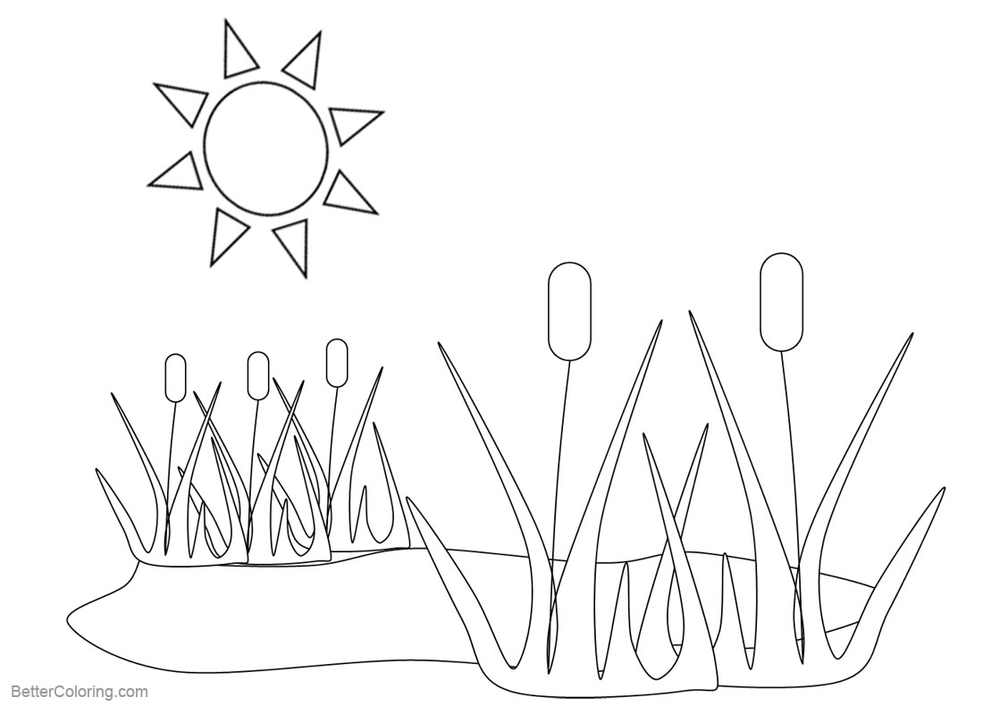pond coloring pages pond coloring pages plants and sunshine free printable coloring pages pond
