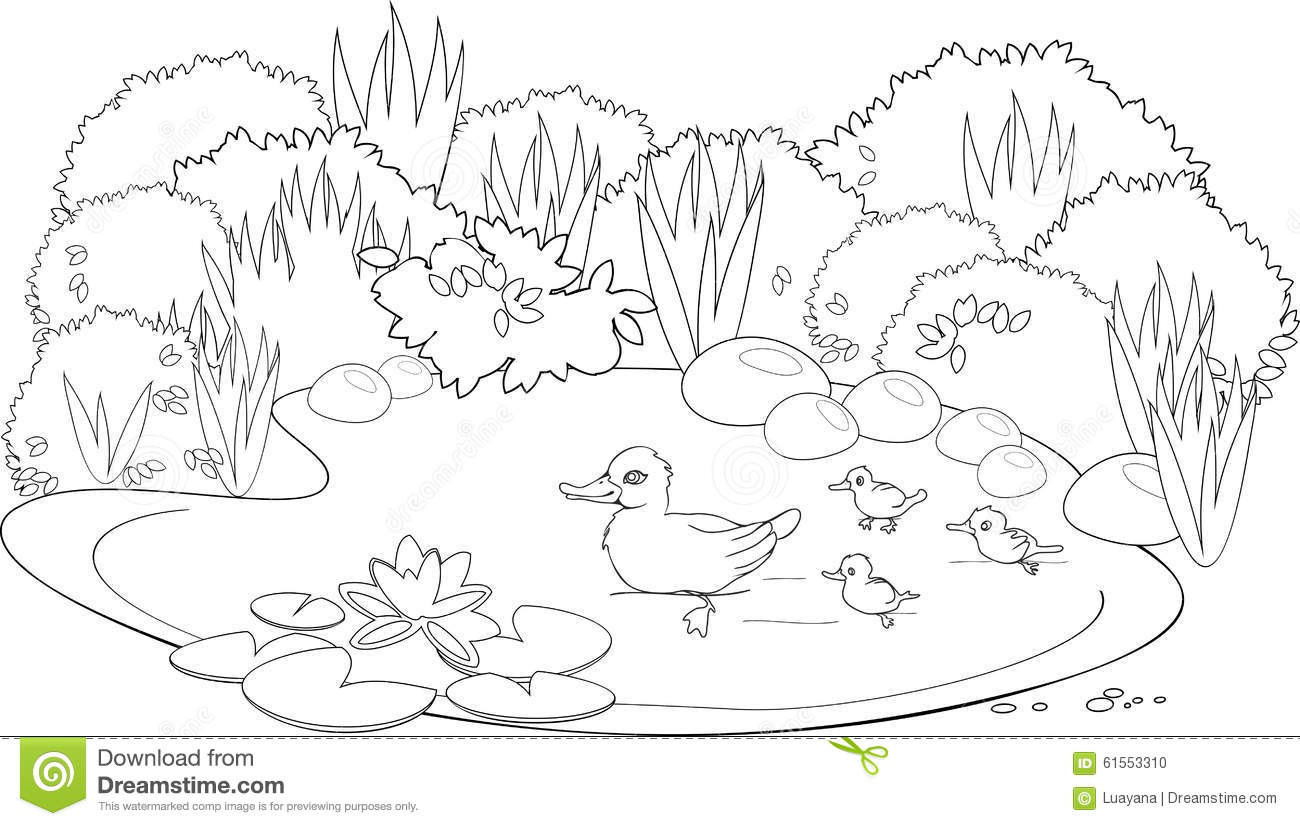 pond coloring pages pond coloring pages small pond with water lily flowers coloring pages pond