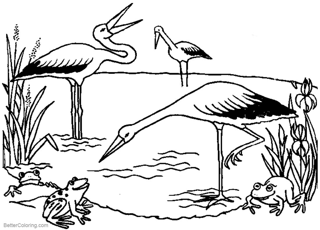 pond coloring pages pond coloring pages with a tree free printable coloring pages pond coloring