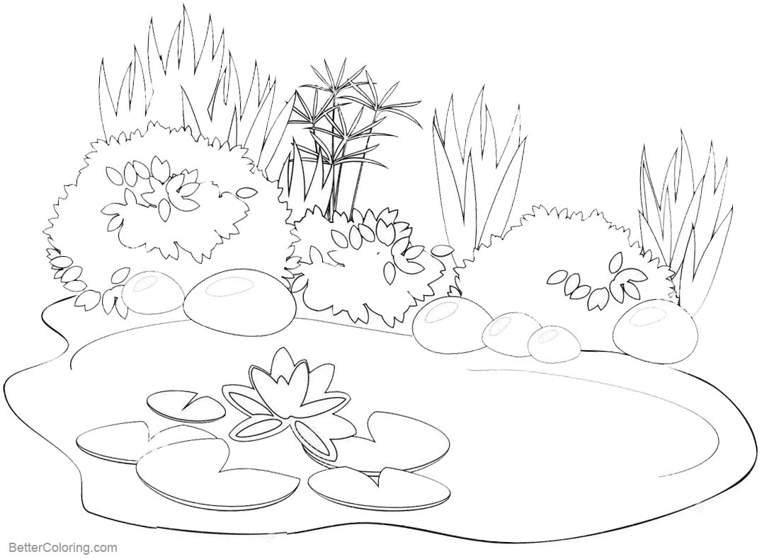 pond coloring pages pond drawing at getdrawings free download pond pages coloring