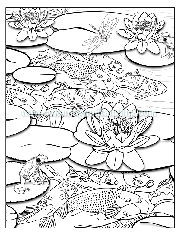 pond coloring pages pond drawing at getdrawings free download pond pages coloring 1 1