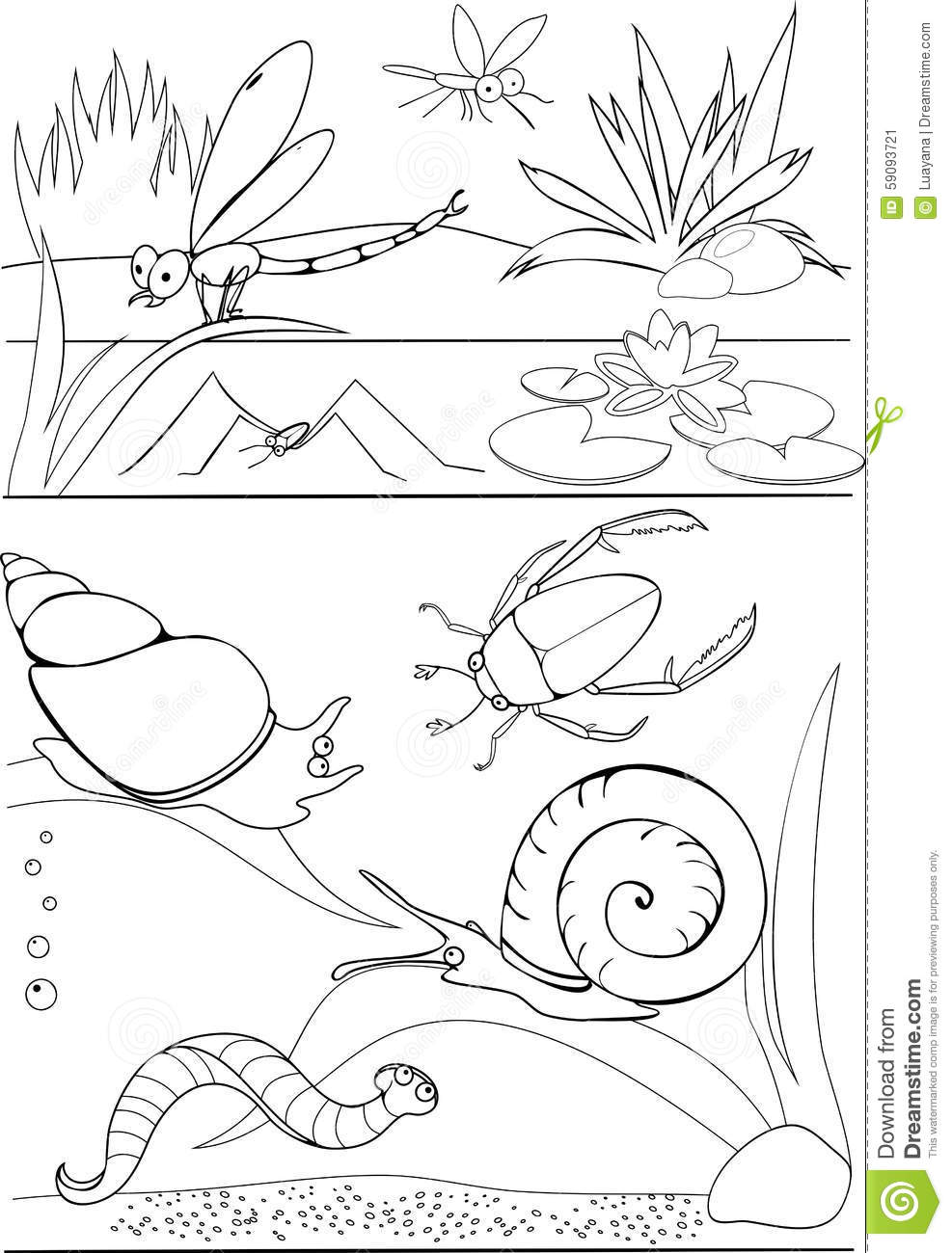 pond coloring pages pond printables free coloring pages adult coloring pages coloring pages pond