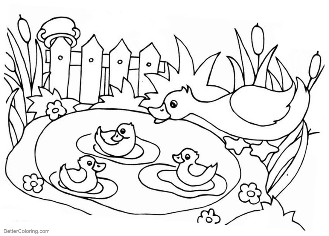 pond coloring pages pond writing colouring 3 grades mashie pond pages coloring