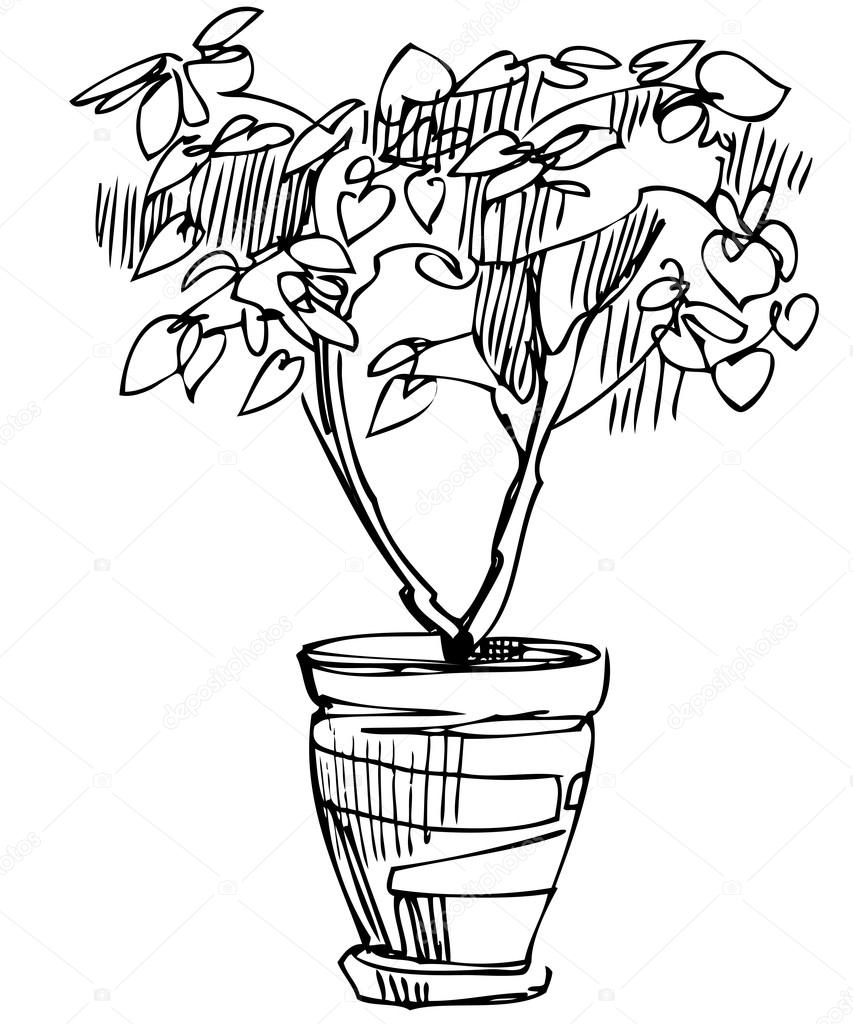 pot plant drawing flower pot drawing images at getdrawings free download plant drawing pot