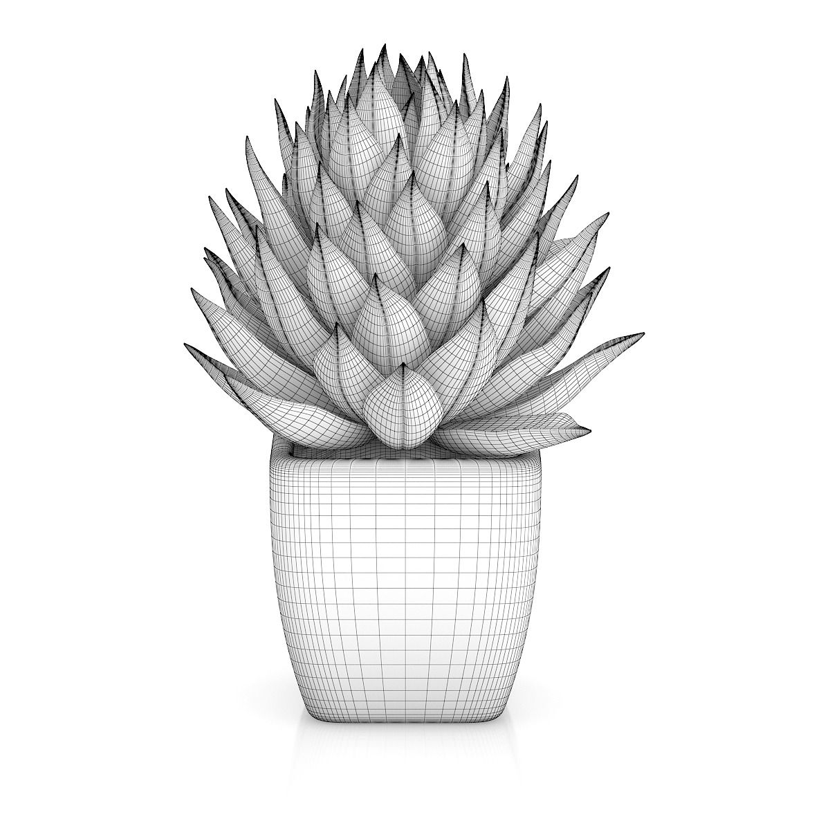 pot plant drawing small plant in white pot 1 small plants plant drawing drawing plant pot