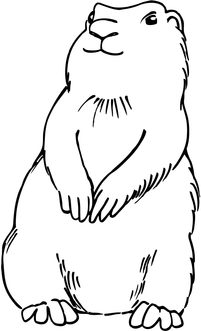 prairie dog drawing line drawing of a dog clipartsco drawing prairie dog