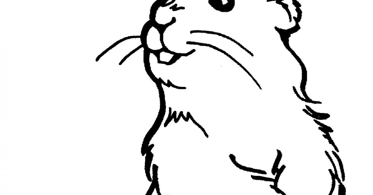 prairie dog drawing prairie dog pattern use the printable outline for crafts prairie dog drawing