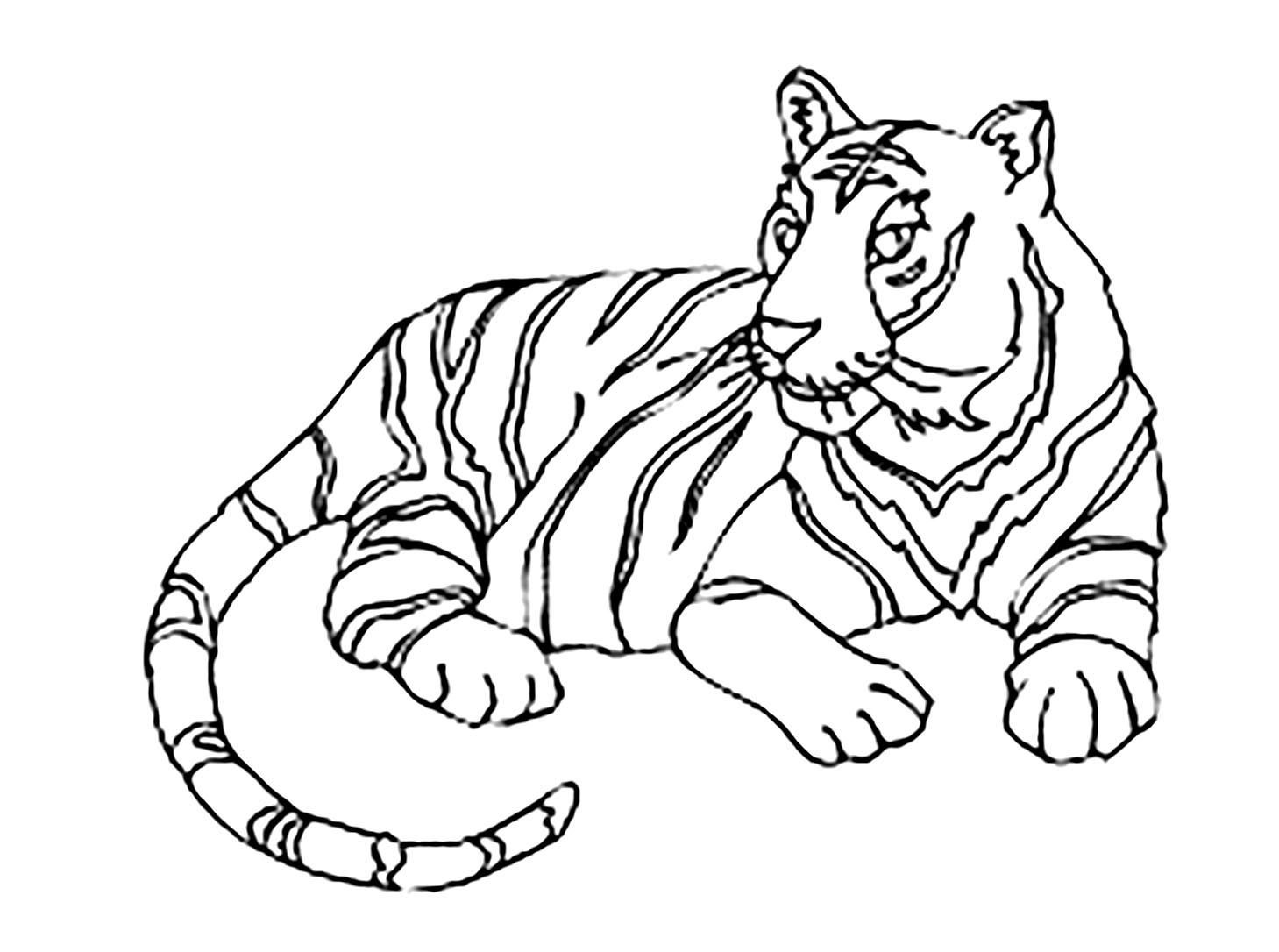 preschool tiger coloring pages awesome coloring page tiger that you must know youre in coloring pages preschool tiger