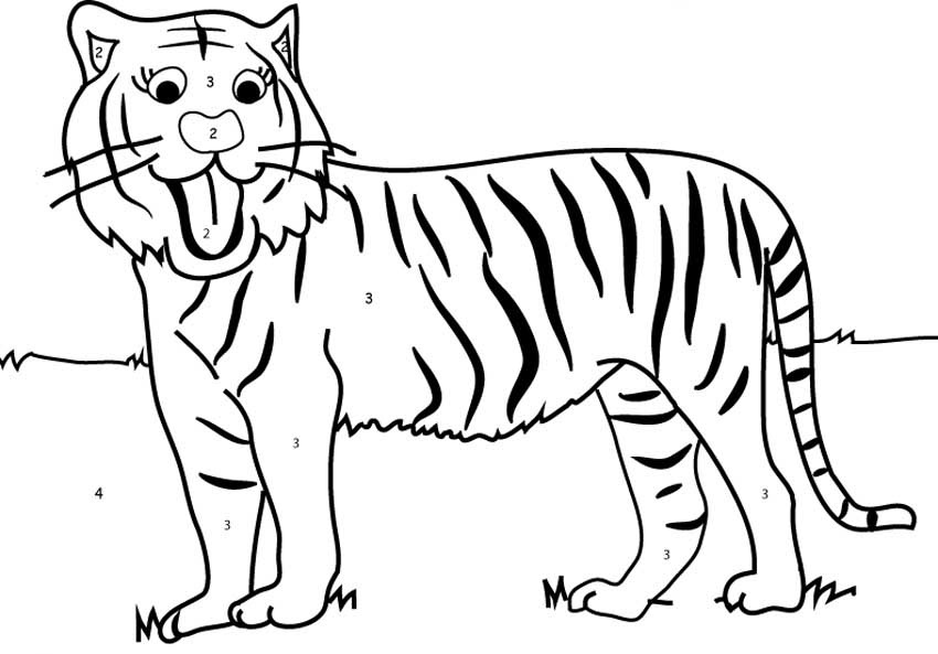 preschool tiger coloring pages tiger coloring numbers kids girls boys children preschool coloring pages tiger
