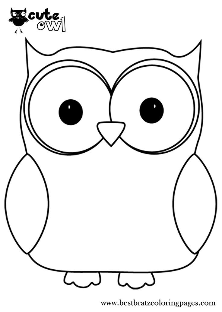 print owl pictures bird coloring pages pictures owl print
