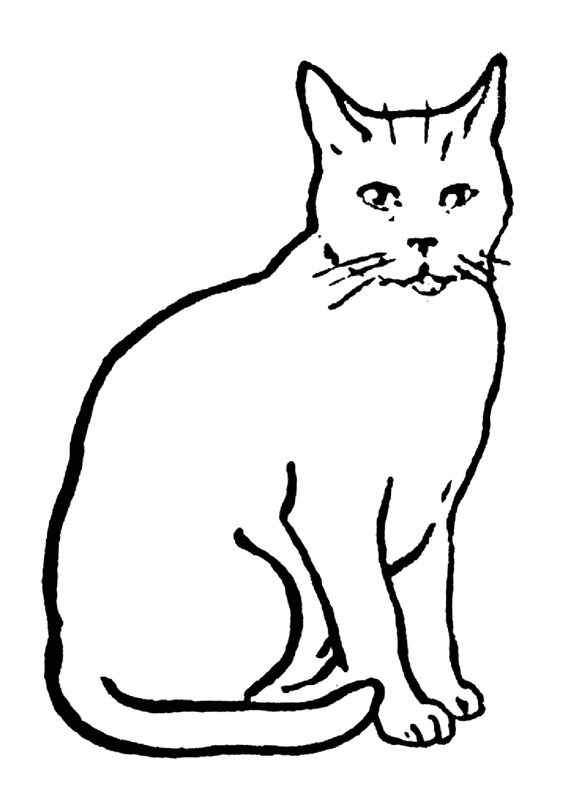 printable cat coloring pages cute cat coloring pages to download and print for free printable coloring pages cat