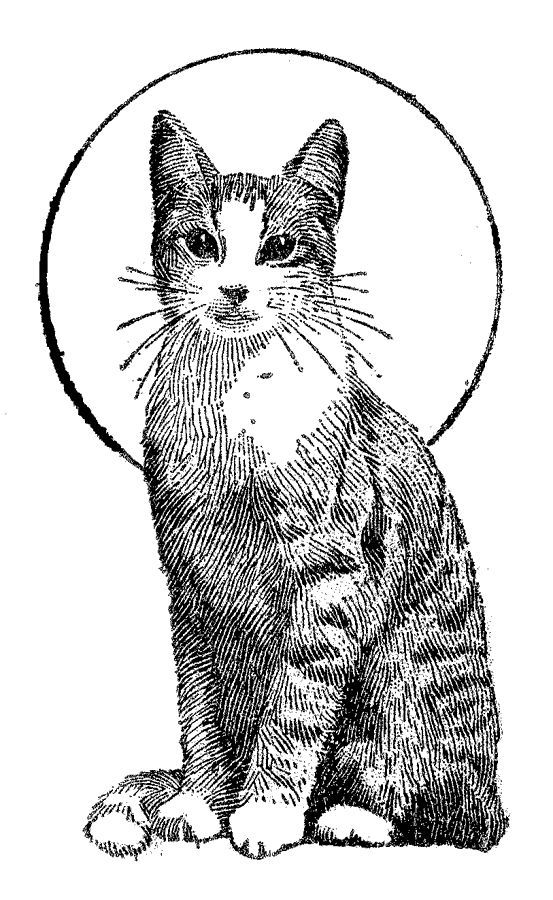 printable cat coloring pages free cat coloring pages purr fect printable coloring printable pages coloring cat
