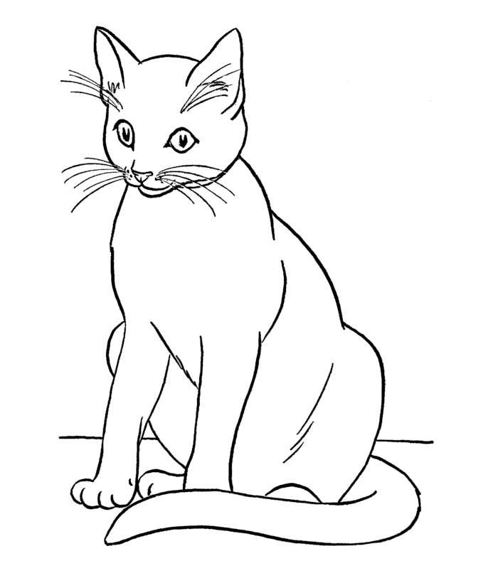 printable cat coloring pages free printable cat coloring pages for kids cool2bkids pages printable coloring cat