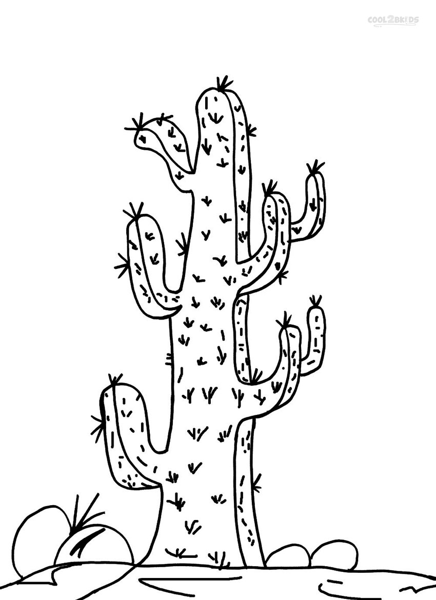 printable coloring pages for teenagers printable cactus coloring pages for kids cool2bkids teenagers pages coloring printable for
