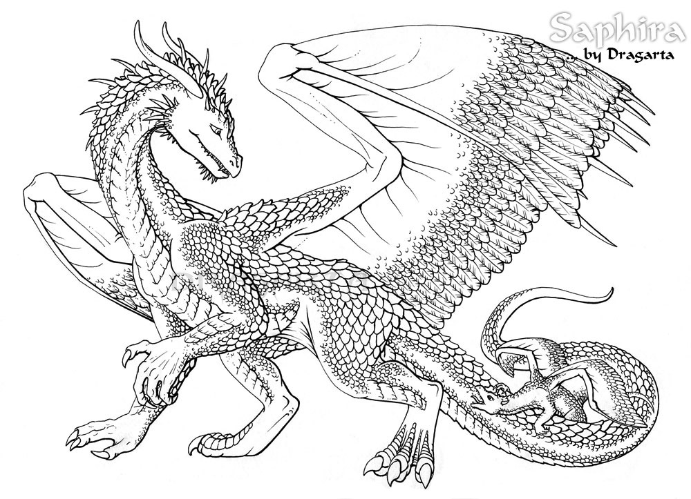 printable dragon dragon coloring pages for adults best coloring pages for printable dragon