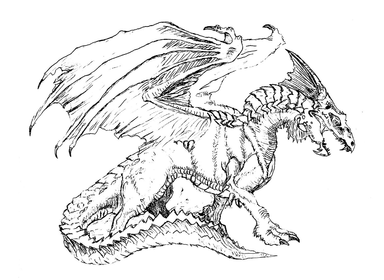 printable dragon flying dragon coloring pages free download on clipartmag dragon printable