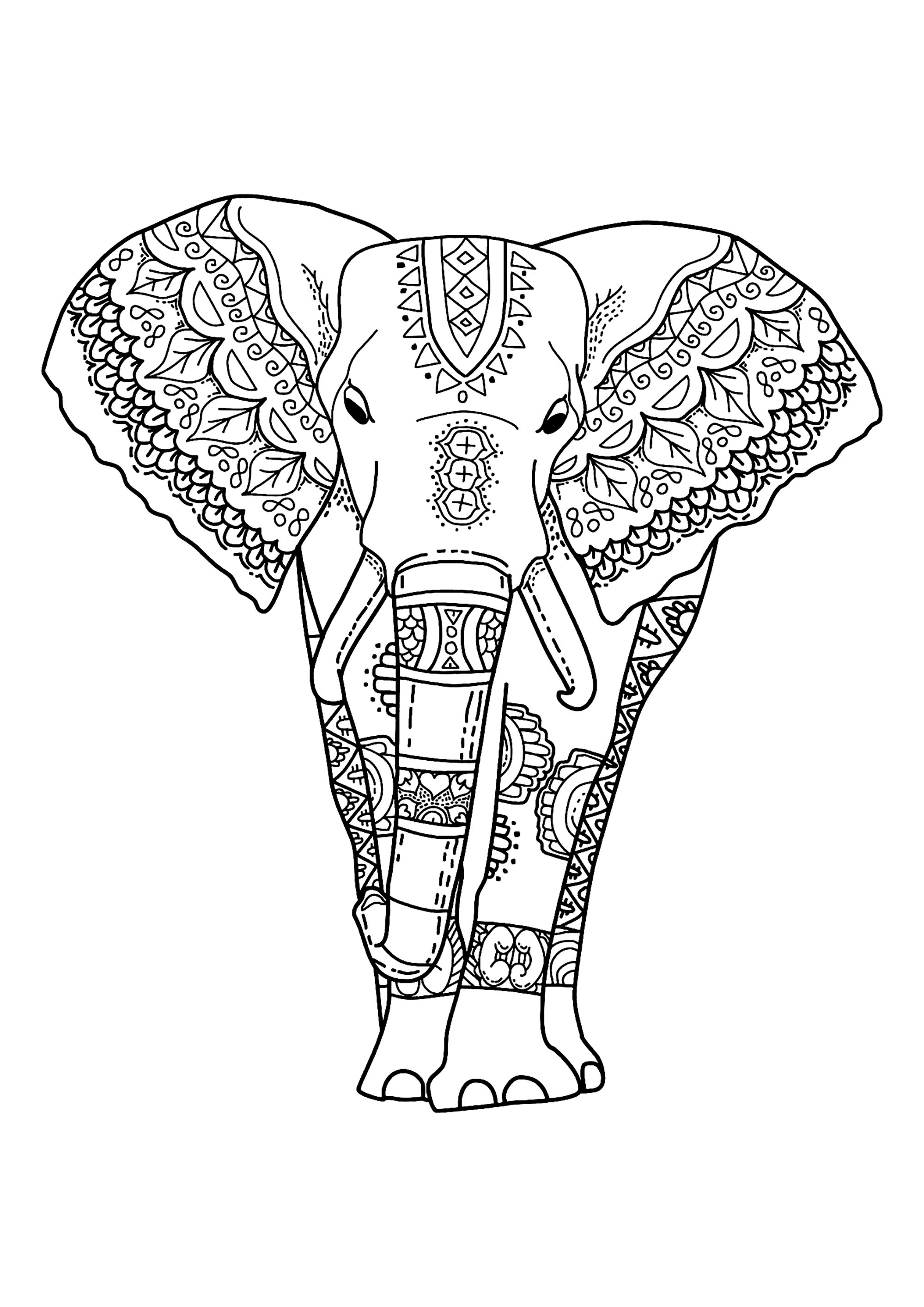 printable elephant coloring pages 63 adult coloring pages to nourish your mental visual elephant coloring pages printable