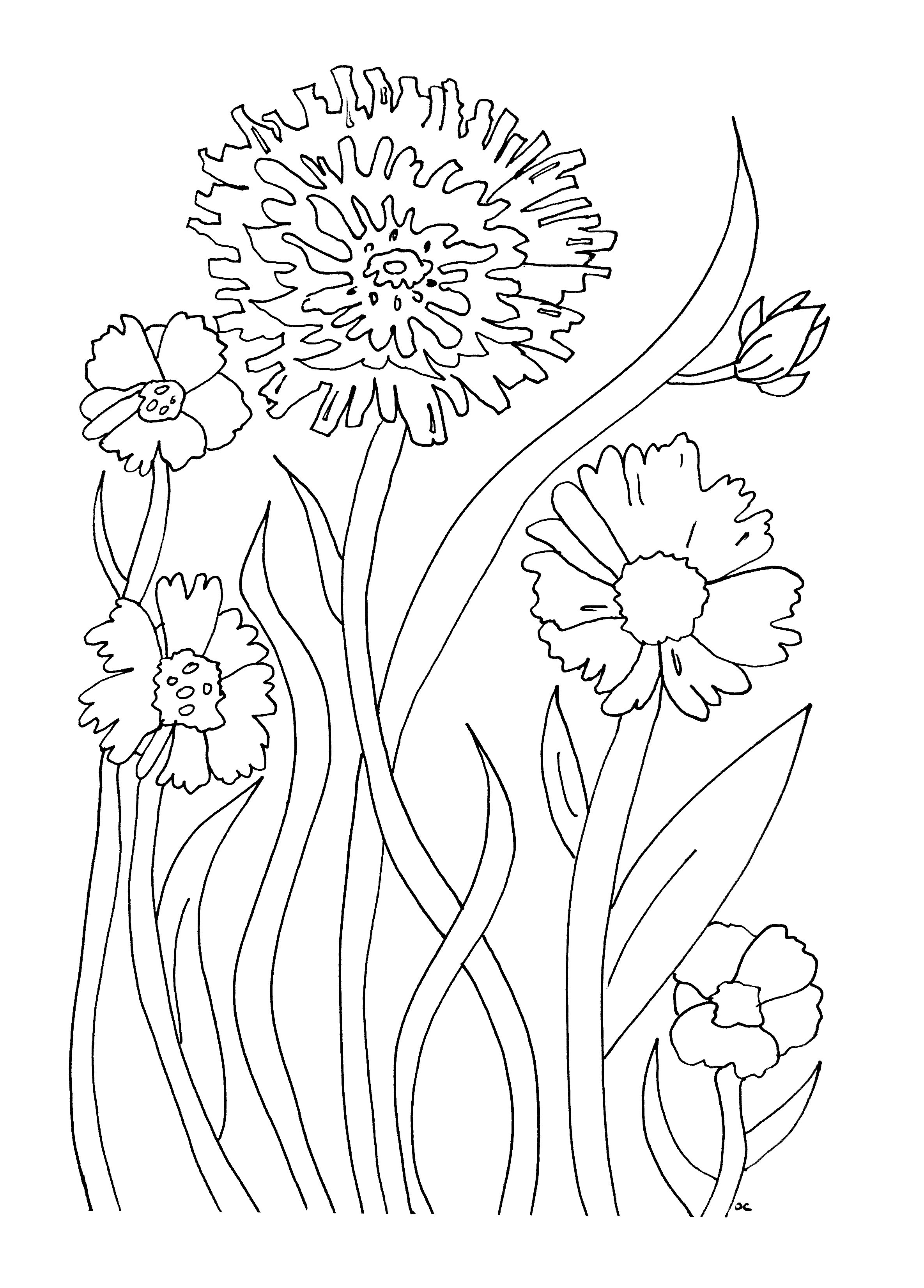printable flowers coloring pages free printable flower coloring pages for kids best pages coloring printable flowers 1 1