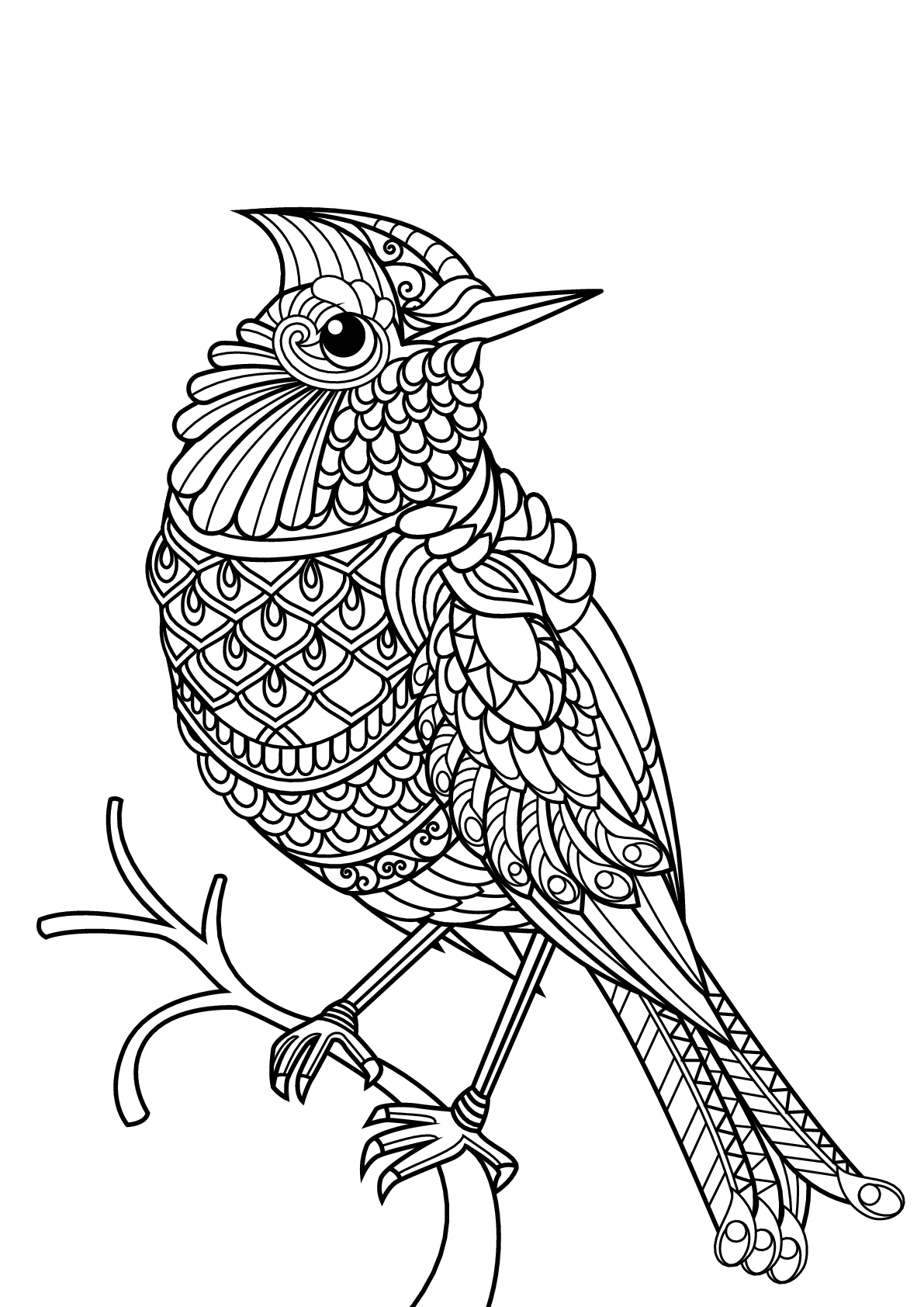 printable images of birds simple bird coloring pages at getdrawings free download birds images printable of
