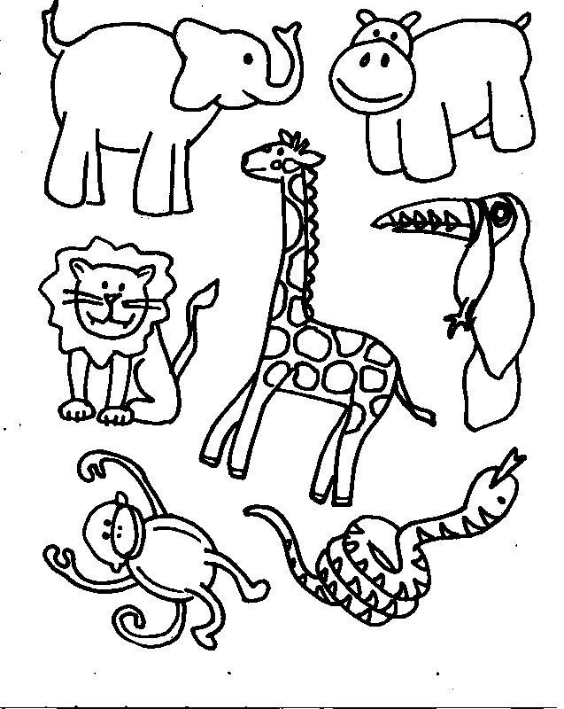printable jungle animals coloring pages animals coloring pages coloring pages for kids jungle printable pages animals coloring