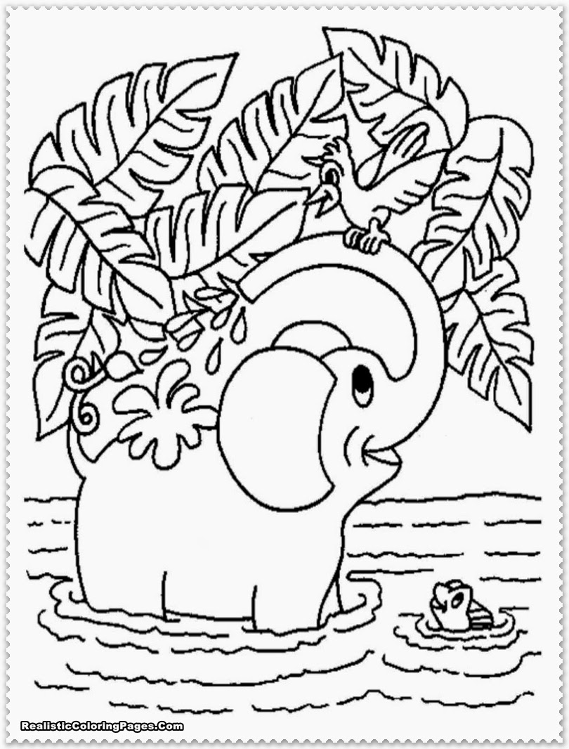 printable jungle animals coloring pages jungle animal coloring pages to download and print for free printable jungle pages coloring animals