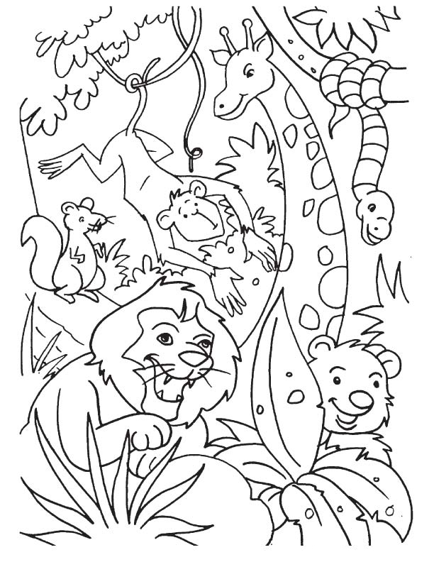 printable jungle animals coloring pages jungle coloring pages animal coloring pages cartoon jungle animals coloring printable pages