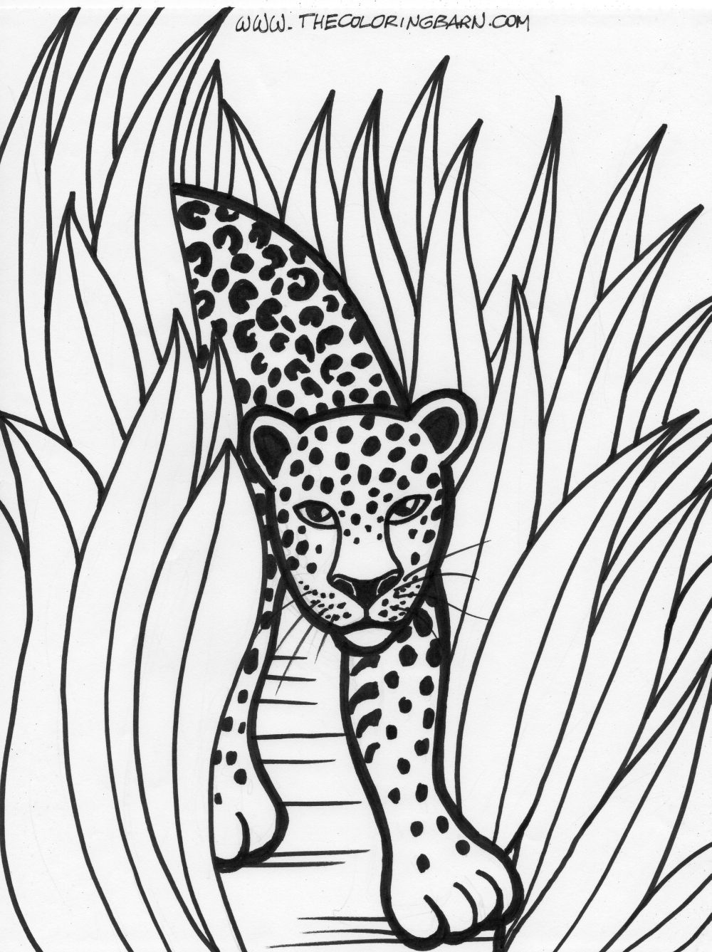 printable jungle animals coloring pages safari coloring pages to download and print for free jungle coloring animals pages printable