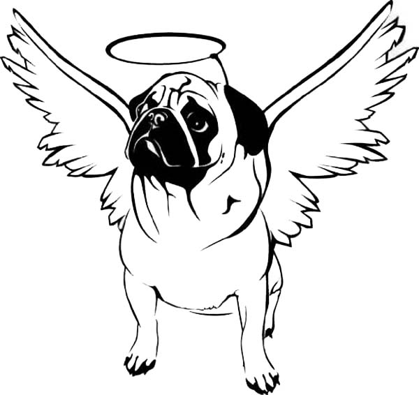 pug coloring pages pug is happy inside a bowl coloring page color luna pages pug coloring