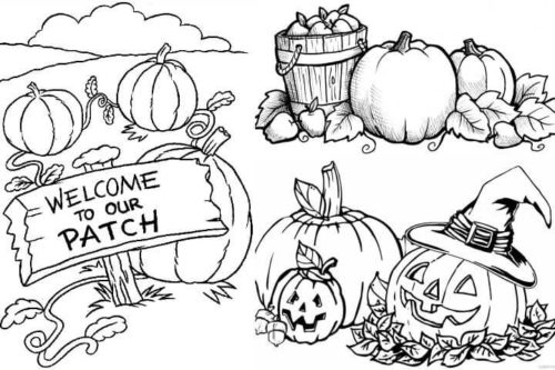 pumpkin patch coloring pages top 25 free printable pumpkin patch coloring pages online pages pumpkin patch coloring