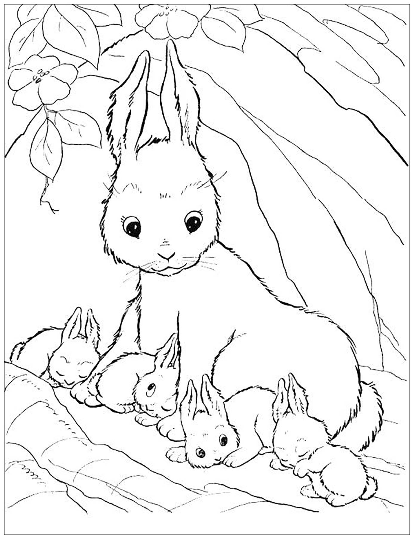 rabbit images for colouring printable rabbit coloring pages for kids cool2bkids images rabbit colouring for