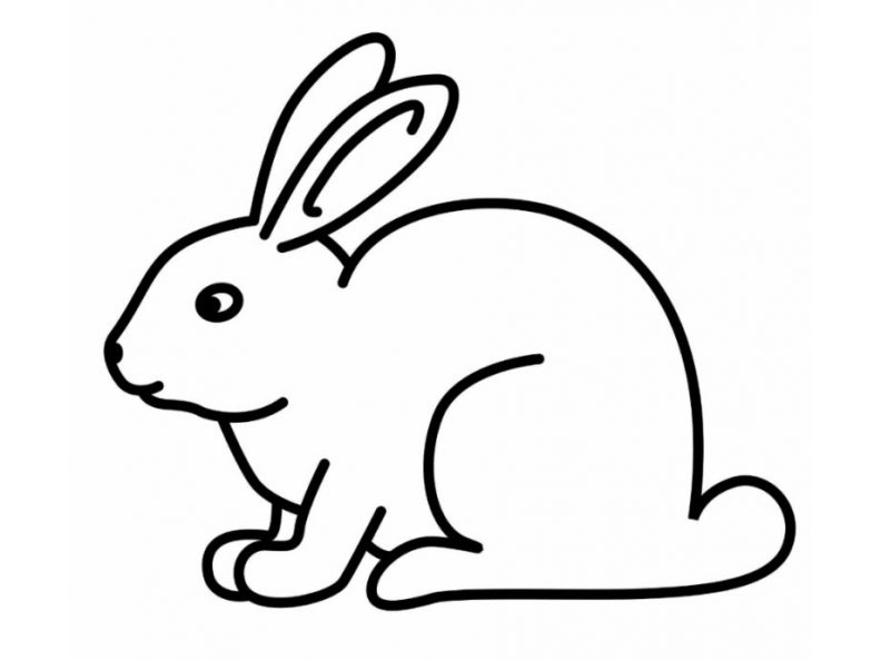 rabbit images for colouring rabbit images for colouring images for colouring rabbit
