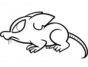 rat images for kids 35 lab rats coloring pages mihrimahasya coloring kids for rat images kids