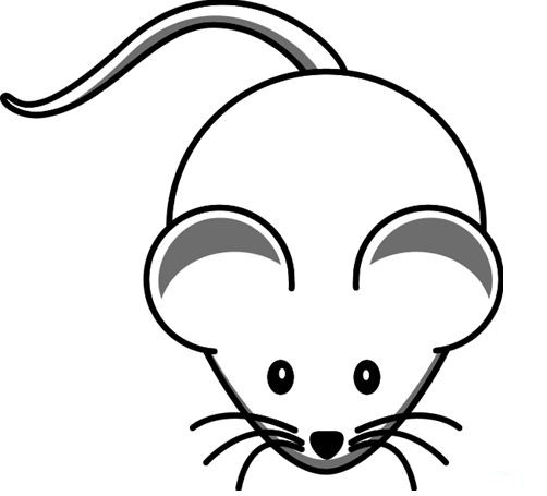 rat images for kids how to draw a rat easy drawing for kids yzarts youtube for images rat kids