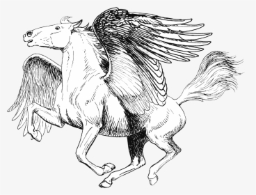 realistic pegasus coloring pages 35 realistic pegasus coloring pages coloring pages pegasus realistic