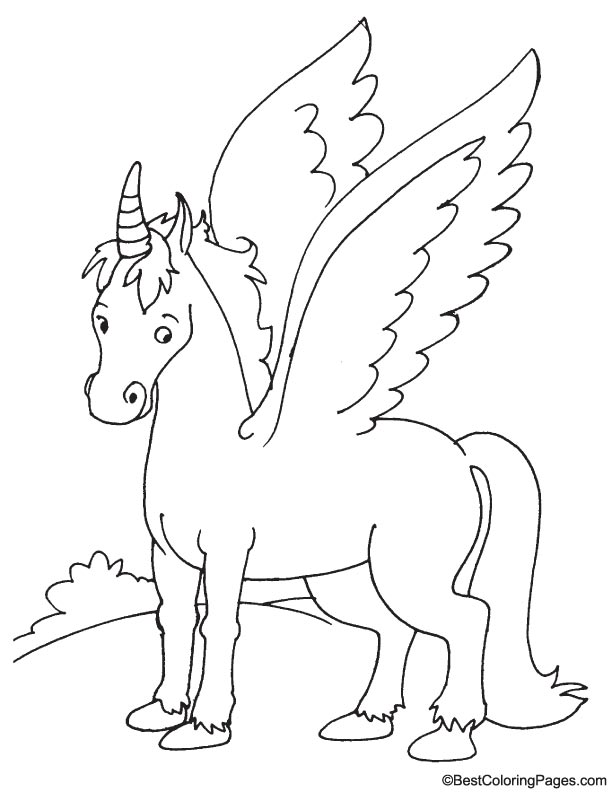 realistic pegasus coloring pages realistic unicorn coloring pages coloring home pegasus coloring realistic pages