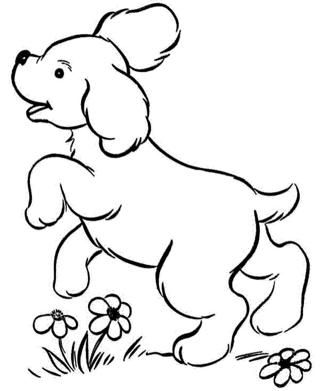 realistic puppy coloring pages pug puppy drawing at getdrawings free download puppy realistic coloring pages
